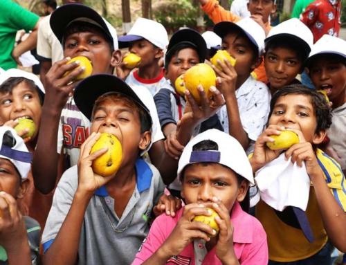 The Mango Story